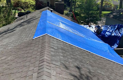 Tarp and Sealing Services