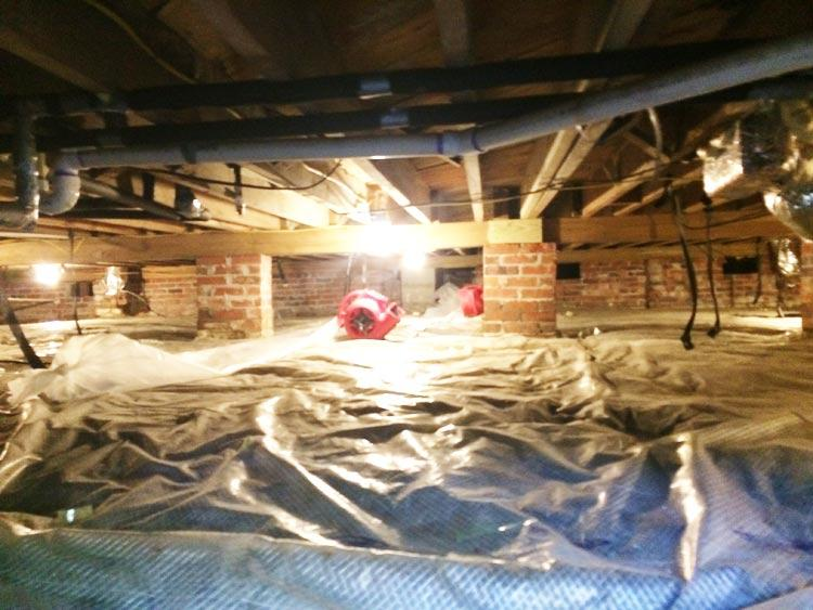 Crawl Space Remediation & Encapsulation Image 2