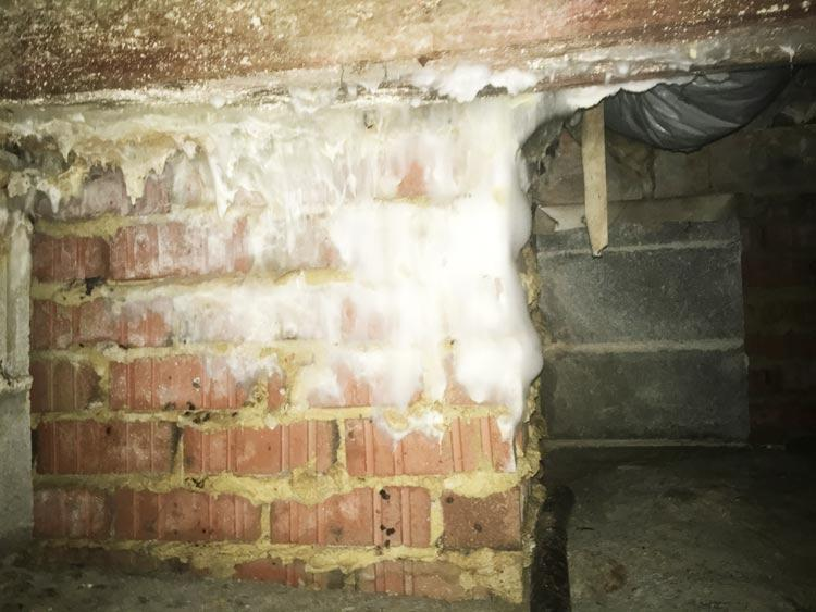 Crawl Space Disasters Image 16