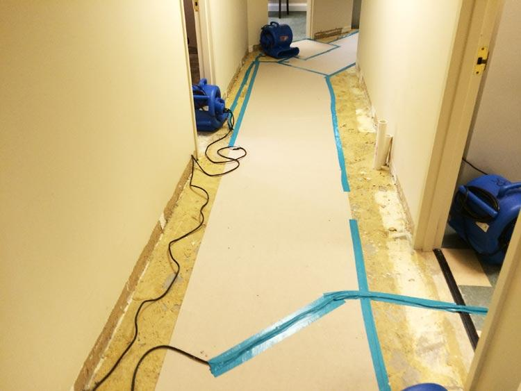 Water Damage Remediation Image 7