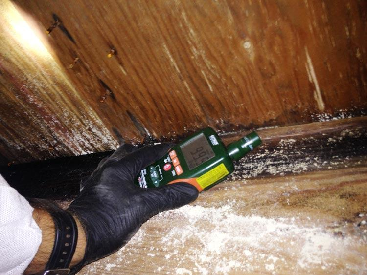 Crawl Space Remediation & Encapsulation Image 1