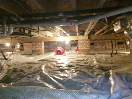 Crawlspace remeditation moisture removal